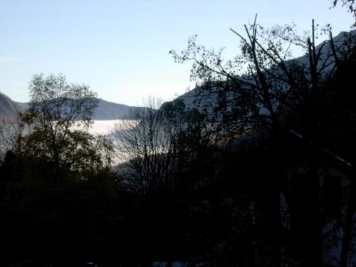 Nebbia della pianura