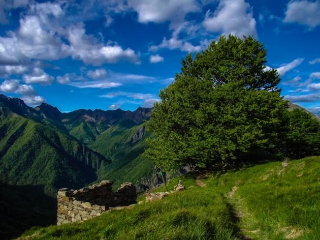 L'Alpe Leciuri e la Val Pogallo