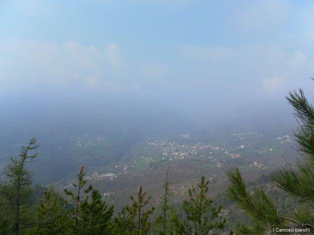 Valle di Viu'