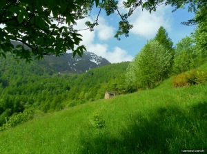 Pascolo-Borgata Missirola (1440 m)