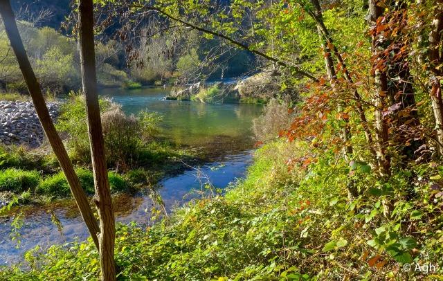 Angolo di bellezza: le acque calme formano delle fantastiche lagune