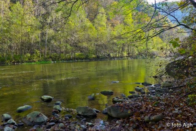 Il torrente alterna tratti di rapide con corrente impetuosa ad altri dove l'acqua scorre placidamente