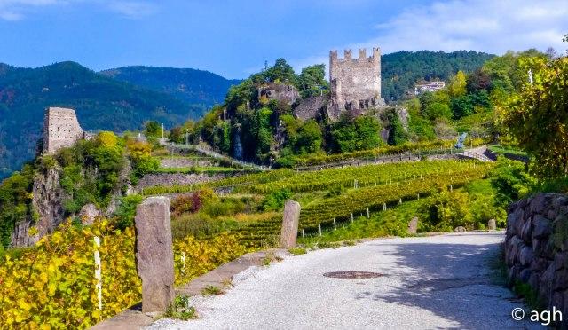 Il Castello di Segonzano circondati dai vigneti